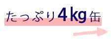 HOP-09-1KG クラシックホワイトペンキ缶3